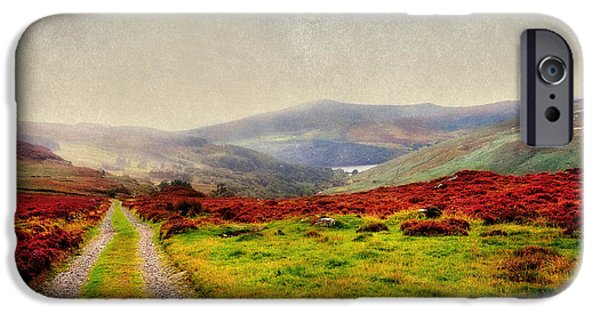 Grass iPhone Cases - May it Be Your Journey On. Wicklow Mountains. Ireland iPhone Case by Jenny Rainbow