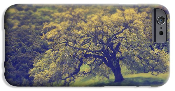 Lone Tree iPhone Cases - Maybe Its Better This Way iPhone Case by Laurie Search