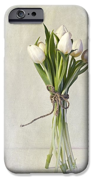 Flower Still Life iPhone Cases - Mazzo iPhone Case by Priska Wettstein