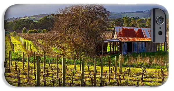 Vale iPhone Cases - McLaren Flat Vineyard iPhone Case by Bill  Robinson