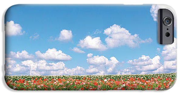 Meadow Photographs iPhone Cases - Meadow Flowers With Cloudy Sky iPhone Case by Panoramic Images