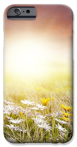 Garden Scene Digital iPhone Cases - Meadow iPhone Case by Les Cunliffe