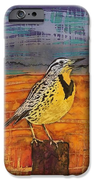 Meadows Song iPhone Case by Carolyn Doe