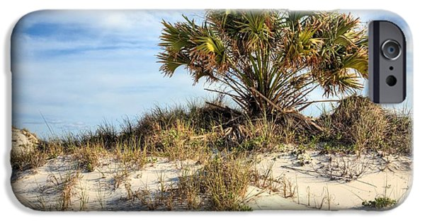 Florida Panhandle iPhone Cases - Meanwhile Somewhere in Florida iPhone Case by JC Findley
