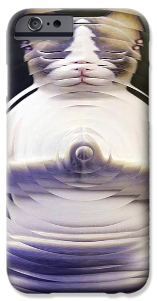 Meditation Kitty iPhone Case by Elizabeth McTaggart