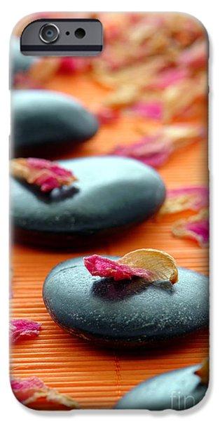 Meditation Zen Path iPhone Case by Olivier Le Queinec
