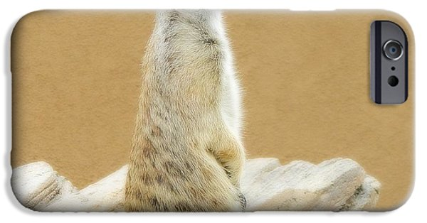Meerkat Digital Art iPhone Cases - Meerkat 2 iPhone Case by Michelle Frizzell-Thompson