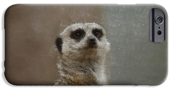 Meerkat Digital Art iPhone Cases - Meerkat 5 iPhone Case by Ernie Echols