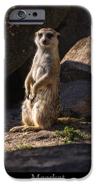 Meerkat Digital Art iPhone Cases - Meerkat iPhone Case by Chris Flees