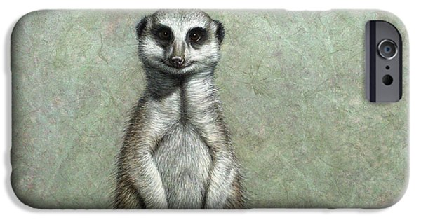 Ground iPhone Cases - Meerkat iPhone Case by James W Johnson