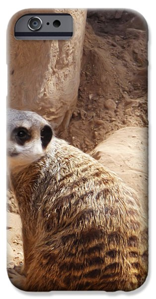 Meerkat Digital Art iPhone Cases - Meerkat Portrait iPhone Case by Methune Hively