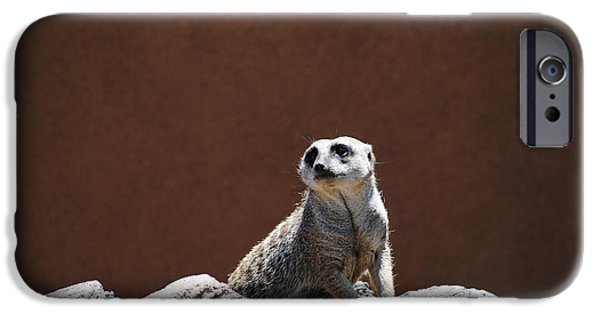 Meerkat Digital Art iPhone Cases - Meerkat iPhone Case by Renee Perran