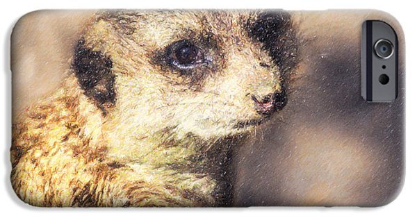 Meerkat Digital Art iPhone Cases - Meerkat Suricata suricatta iPhone Case by Liz Leyden