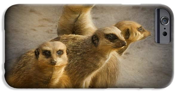 Meerkat Digital Art iPhone Cases - Meerkat watch iPhone Case by Ian Merton