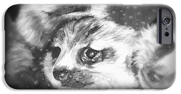 Meerkat Digital Art iPhone Cases - Meerkats iPhone Case by Alice Sebina