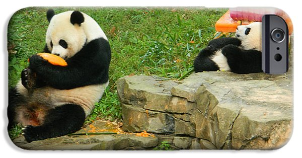 Smithsonian iPhone Cases - Mei Xiang and Bao Bao In Celebration iPhone Case by Emmy Marie Vickers