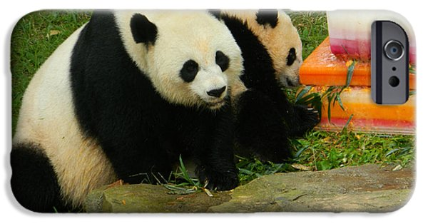 Smithsonian iPhone Cases - Mei Xiang and Bao Bao the Pandas iPhone Case by Emmy Marie Vickers