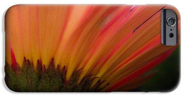 Award Winning Art iPhone Cases - Mellow Mornings iPhone Case by Karen Wiles