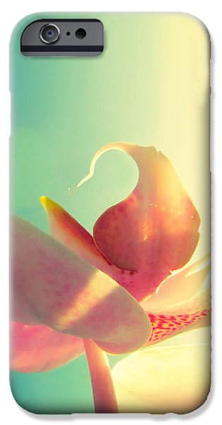 Macro iPhone Cases - Melody iPhone Case by Amy Tyler