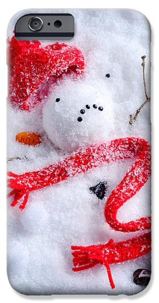 Snowball iPhone Cases - Melted Snowman iPhone Case by Amanda And Christopher Elwell