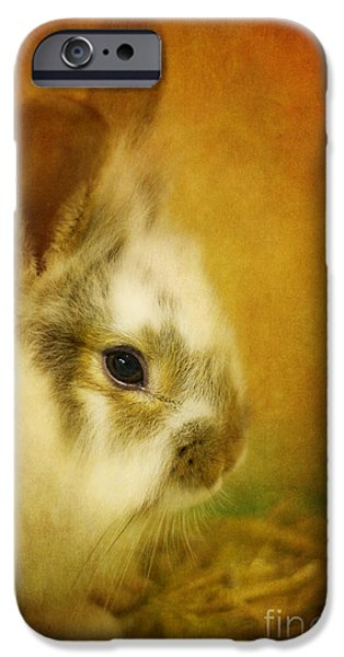 Rabbit iPhone Cases - Memories of Watership Down iPhone Case by Lois Bryan