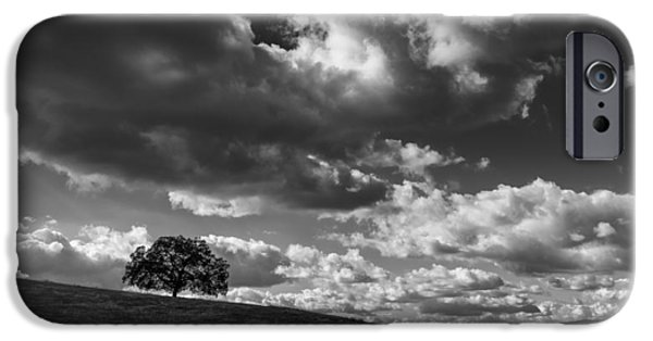 Storm Clouds iPhone Cases - Mesa Grande Tree iPhone Case by Joseph Smith