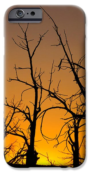 Wildfire iPhone Cases - Mesa Verde Sunset iPhone Case by Dan Sproul
