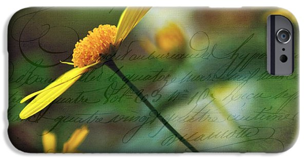 Daisy Bud iPhone Cases - Message in a Daisy iPhone Case by Kaye Menner