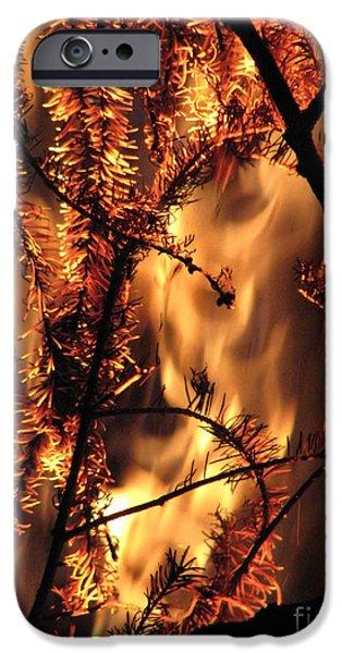 Metamorphosis iPhone Case by Rory Sagner