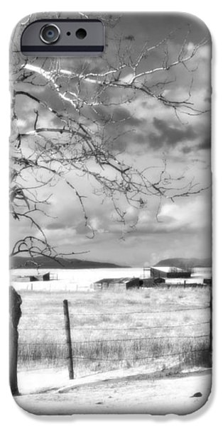 MID-WINTER MOONLIGHT iPhone Case by Theresa Tahara