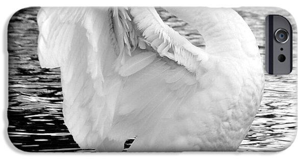 Swans... iPhone Cases - Midflap iPhone Case by JT Photography