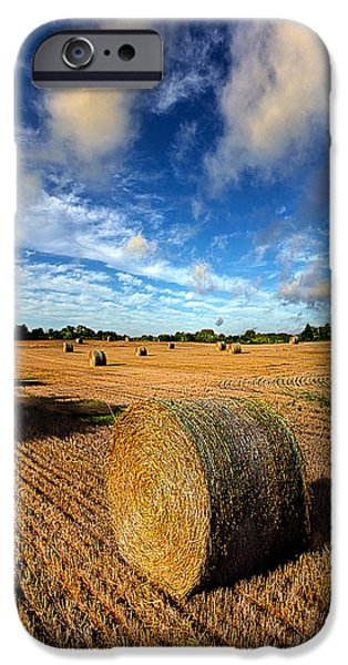 Crops iPhone Cases - Midsummer Harvest iPhone Case by Phil Koch