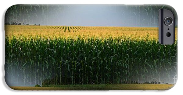 Crops iPhone Cases - Midwest Gold iPhone Case by Luther   Fine Art