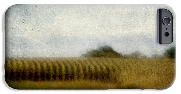 Crops iPhone Cases - Midwestern Drive-By Corn Fields iPhone Case by Carol Leigh