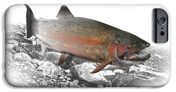 Fresh Water Fish iPhone Cases - Migrating Steelhead Rainbow Trout iPhone Case by Randall Nyhof