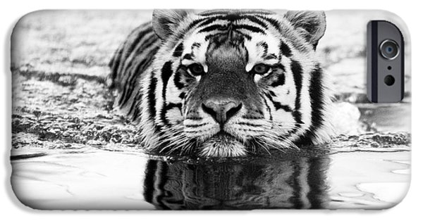 Mike The Tiger iPhone Cases - Mike iPhone Case by Scott Pellegrin