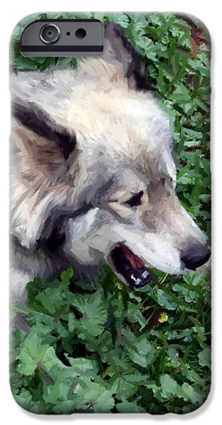 Husky Mixed Media iPhone Cases - Miley The Husky With Blue and Brown Eyes - Impressionist Artistic Work iPhone Case by Michael Braham