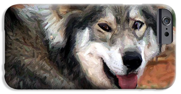 Husky Mixed Media iPhone Cases - Husky With Blue and Brown Eyes - Impressionist Expression iPhone Case by Michael Braham