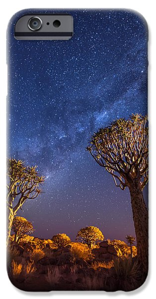 Orange iPhone Cases - Milky Way Over Quiver Trees iPhone Case by Duane Miller