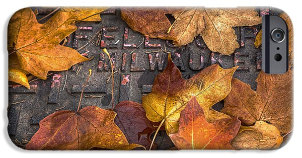Leaf Change iPhone Cases - Milwaukee Autumn iPhone Case by Scott Norris
