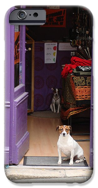 Minding the Shop. Two french dogs in Boutique iPhone Case by Menega Sabidussi