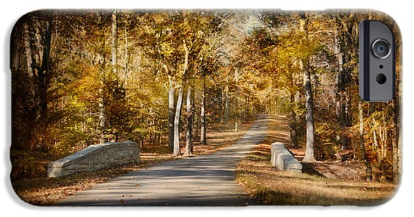 Autumn Scenes Photographs iPhone Cases - Mingling With Beauty iPhone Case by Jai Johnson
