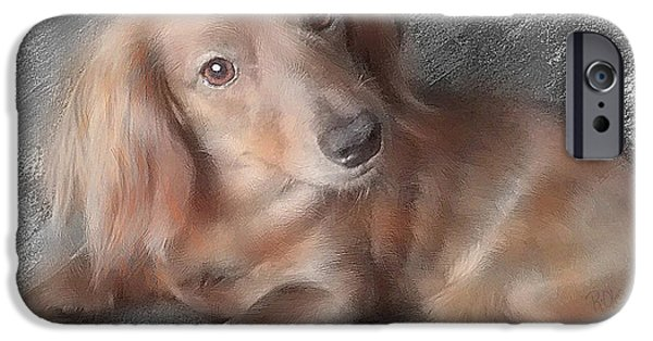 Puppies iPhone Cases - Mini Doxie iPhone Case by Richard Oles