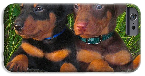 Dog iPhone Cases - Miniature Pinscher iPhone Case by Marvin Blaine