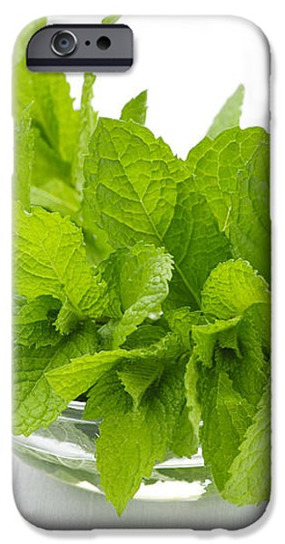Mint sprigs in bowl iPhone Case by Elena Elisseeva
