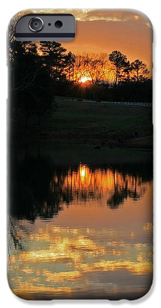 Mirror Image  iPhone Case by Jinx Farmer
