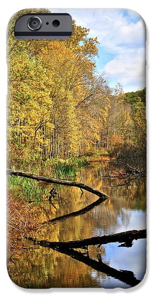 Willow Lake iPhone Cases - Mirror Mirror on the Floor iPhone Case by Frozen in Time Fine Art Photography