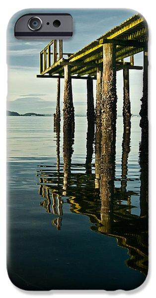 Alga iPhone Cases - Mirrored Algae Pier iPhone Case by Jani Freimann