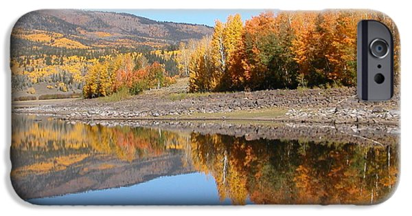 Fall iPhone Cases - Mirrored Fall iPhone Case by Our View
