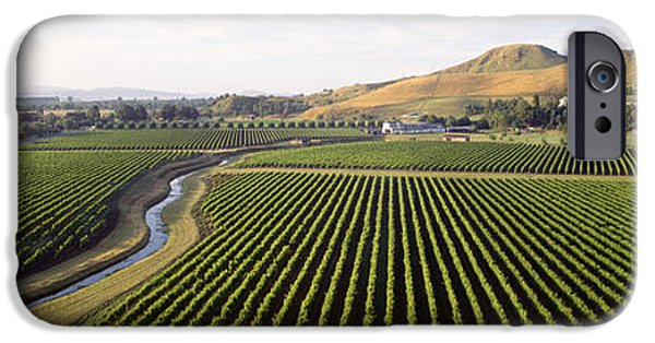 Winery Photography iPhone Cases - Mission Vineyard, Hawkes Bay North iPhone Case by Panoramic Images